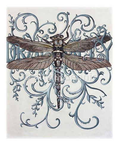 Ornamental Dragonfly